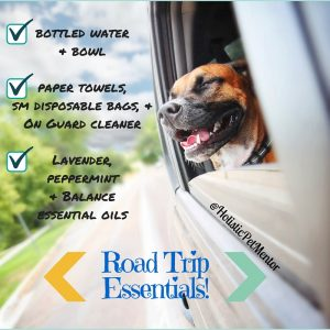 Essentials for traveling with pets!