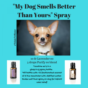 my-dog-smells-better-than-yours-spray