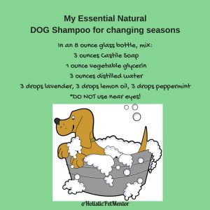my-essential-natural-pet-shampoo-for-changing-seasons